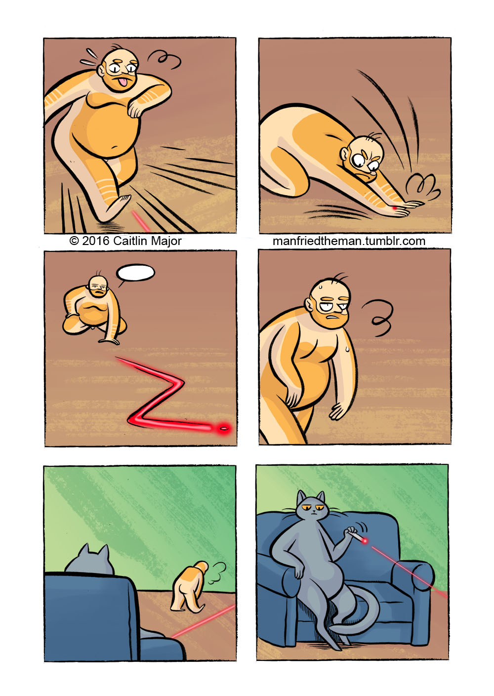 Manfried chases a laser pointer